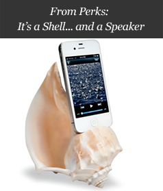 From Perks: It's a Shell... and a Speaker