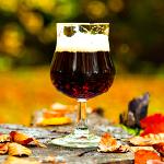 UD - Fall Beers. Lots of 'Em.