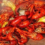 UD - Crawfish Boil Season Is On