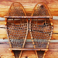 UD - Just a Little Shelf Made from Snowshoes