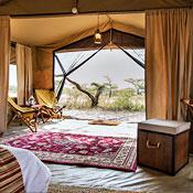 UD - Serengeti Explorer Camp