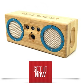 Bongo Wireless Speaker