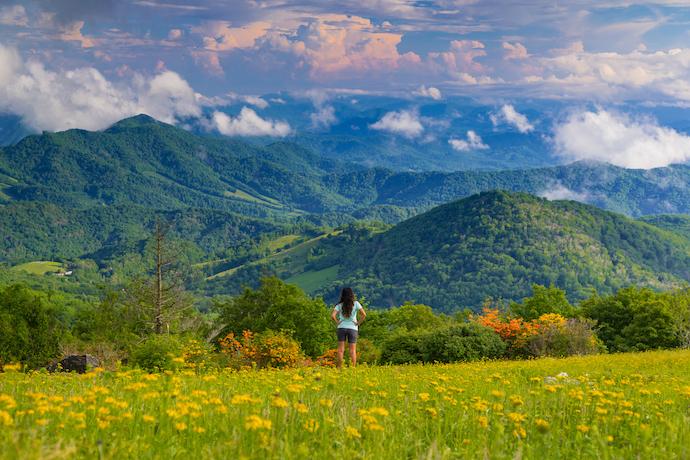 asheville north carolina mountains