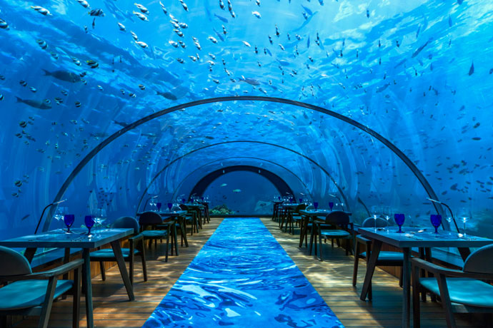 oh it s just the world s largest undersea restaurant. Black Bedroom Furniture Sets. Home Design Ideas