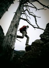 UD - NOC Wilderness Survival School