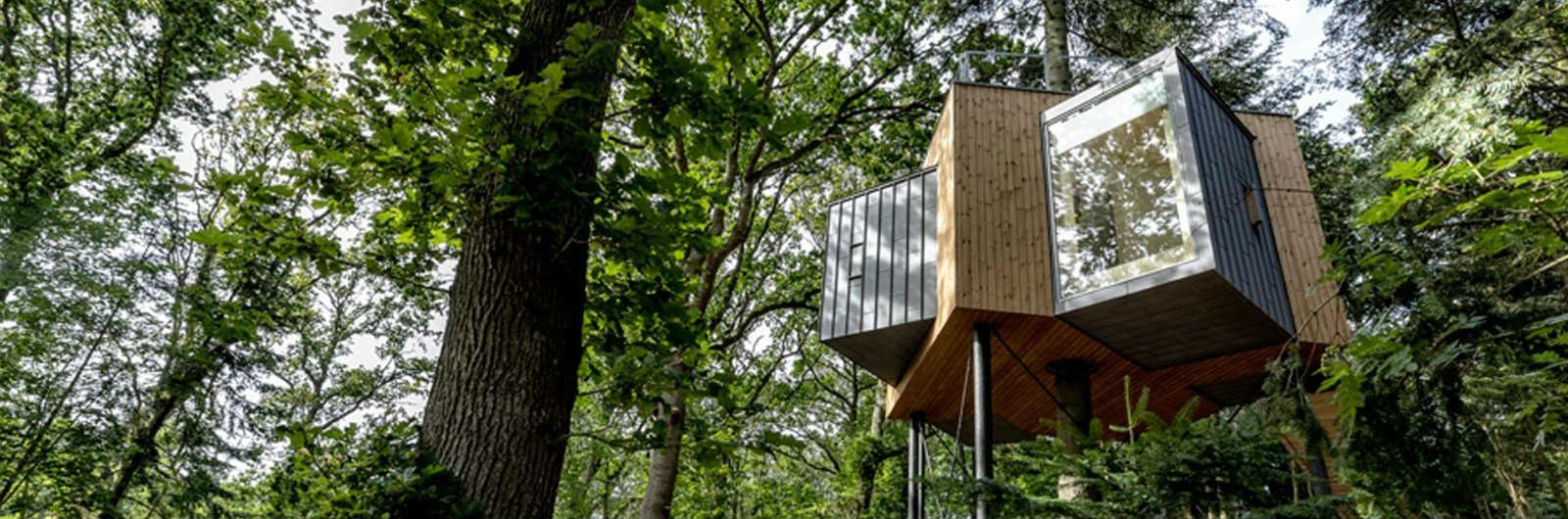 This Treetop Hotel Lies Above a Danish Forest