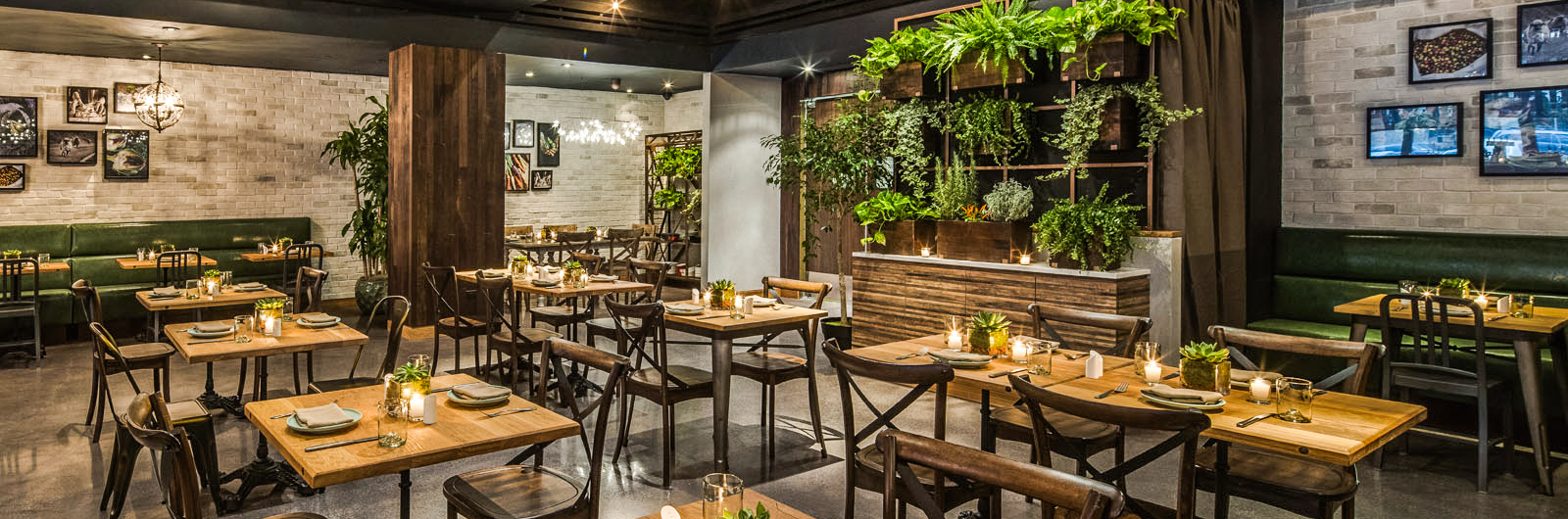 Eden Local - New York | A Greenery-Filled Oasis in Midtown