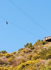UD - Catalina Zip Line Eco Tour