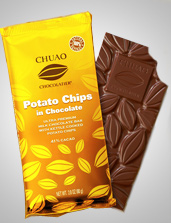 UD - Potato Chips in Chocolate Bar