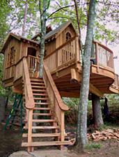 UD - Treehouse Building Workshop