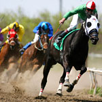 Betting the Ponies at Lone Star Park
