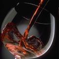 Half-Price Bottles of Wine at STIX