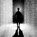 A Room of Rain at MoMA