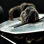 Nobu Truffle Tasting Menu