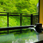 Japan Made You a Sauna. It's Nice.