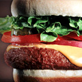 Half Off Gourmet Burgers and 40% Off Exclusive Dopp Kits
