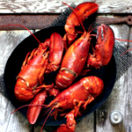 All the Ways of Lobster