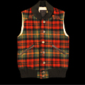 UD - A Plaid Vest Fit for the Highlands