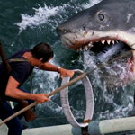 Nothing Says Holiday Weekend Like Jaws