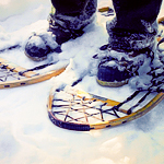 Strap On Your Best Snowshoes...