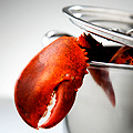 $26 Lobster Boil at the Angler's