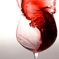 Wild Wine Wednesdays at Bistro One