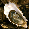Oysters and Rare Beer at ChurchKey