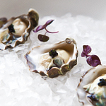 The New Oyster Situation at Ichi