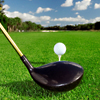 His: Private Golf Lessons at Quail Lodge Resort
