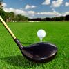 His: Private Golf Lessons at Quail Lodge Resort