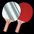 Ping-Pong Mirror Paddle