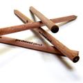 Pre-Chewed Pencils