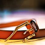 A Quick-Release Belt