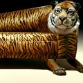 Rodolfo Rocchetti Tiger Couch