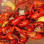 UD - Crawfish Boil Season Is On