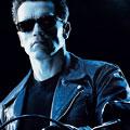 You, Subbing In for Schwarzenegger
