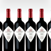 Six Bottles of Argentina's Finest Malbec: Yours