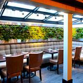 The Greenhouse at Alden & Harlow