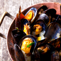 Bivalves and Beer. On the House.