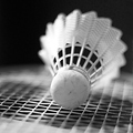 20 Courts of 24-Hour Badminton