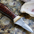 The Strongest Oyster Knife on Earth