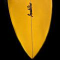 Pendoflex Surfboard