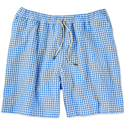 These Gingham Swim Trunks