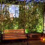 One Rooftop's Back, One Patio Is Born