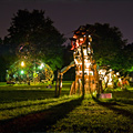 Figment Festival Takes Governors Island