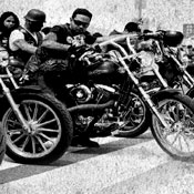 Motorcycle Gangs. Not Your Average Museum Exhibit.