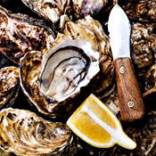 Oyster Trails Worth Embarking Upon