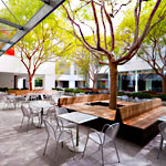 The Hammer Museum Courtyard
