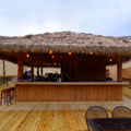 A Huge New Tiki Roof Deck in Clarendon
