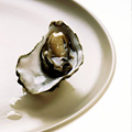 $1 Oysters at Elite Café